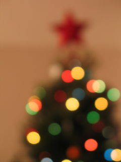 blurryxmastree.jpg